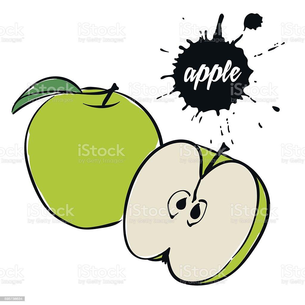 Fruits Pomme verte stock vecteur libres de droits libre de droits