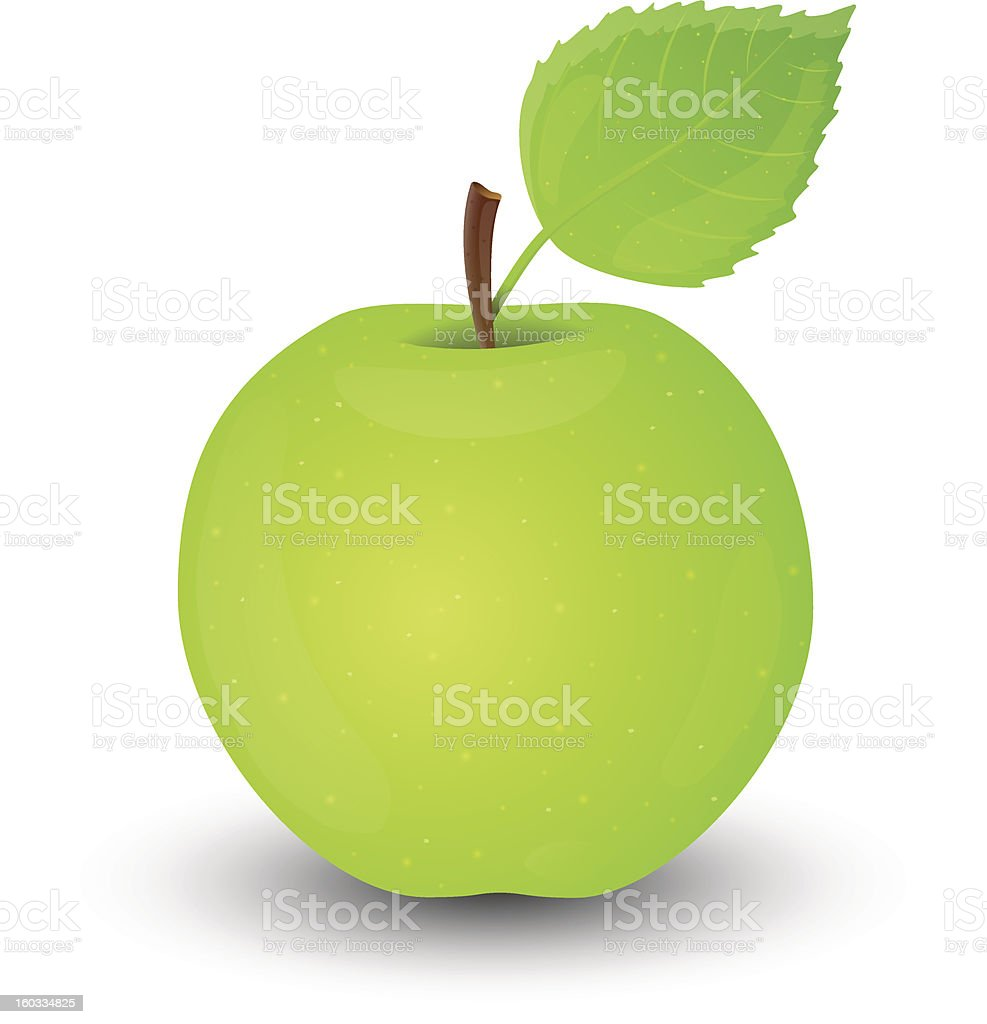 Green apple isolated on white background. royalty-free stock photo