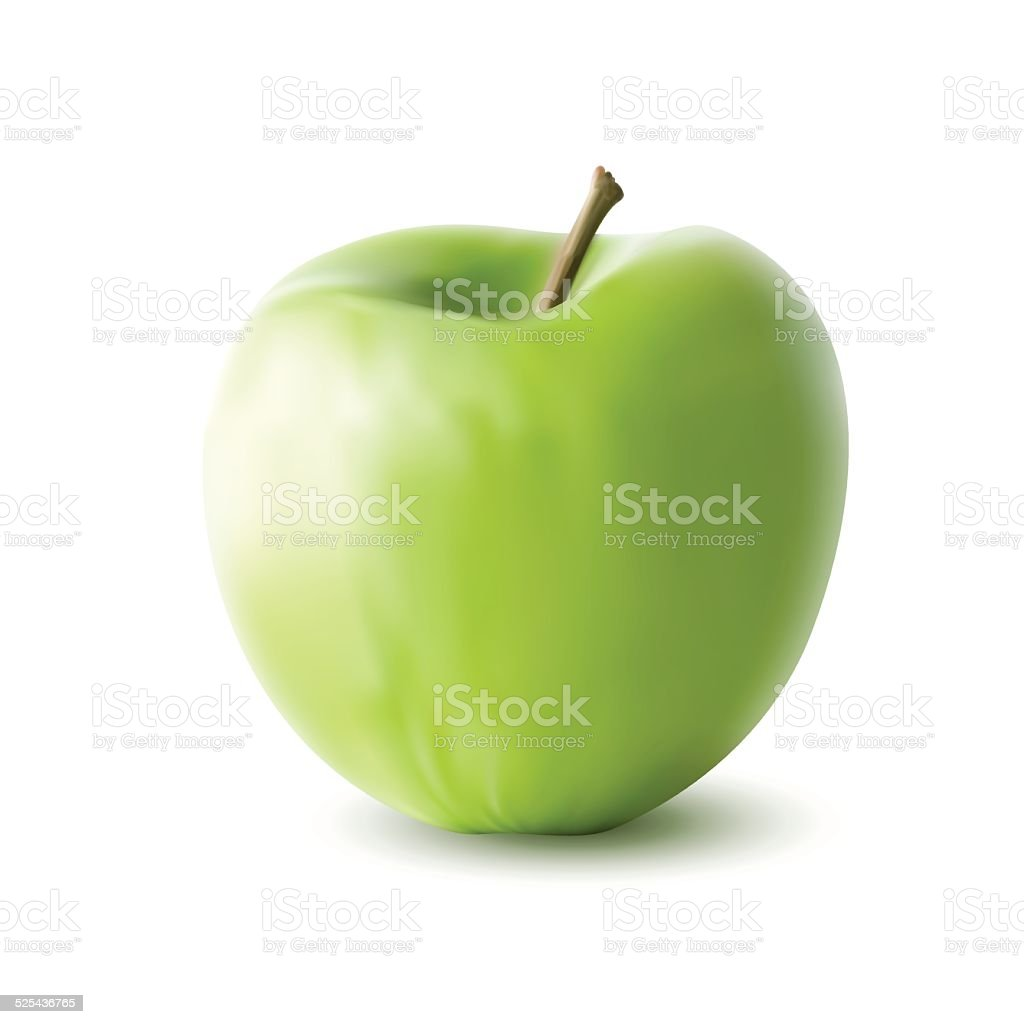green apple isolated on white background vector art illustration