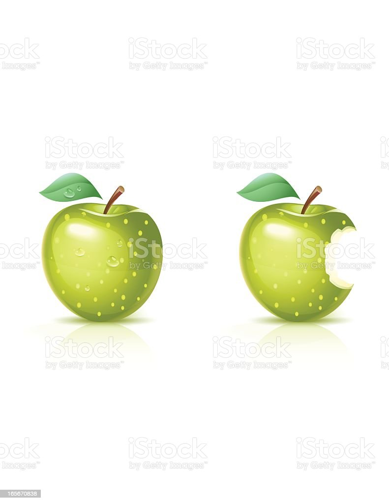 Green Apple (Sour) vector art illustration