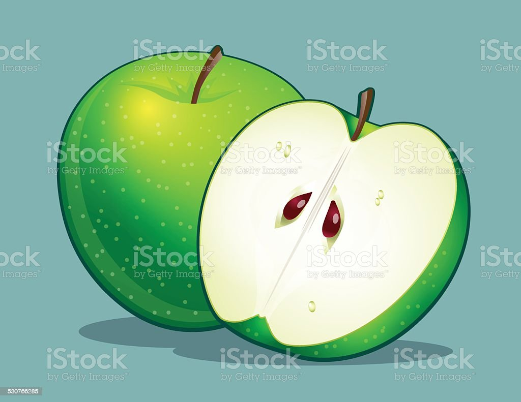 Green apple vector art illustration