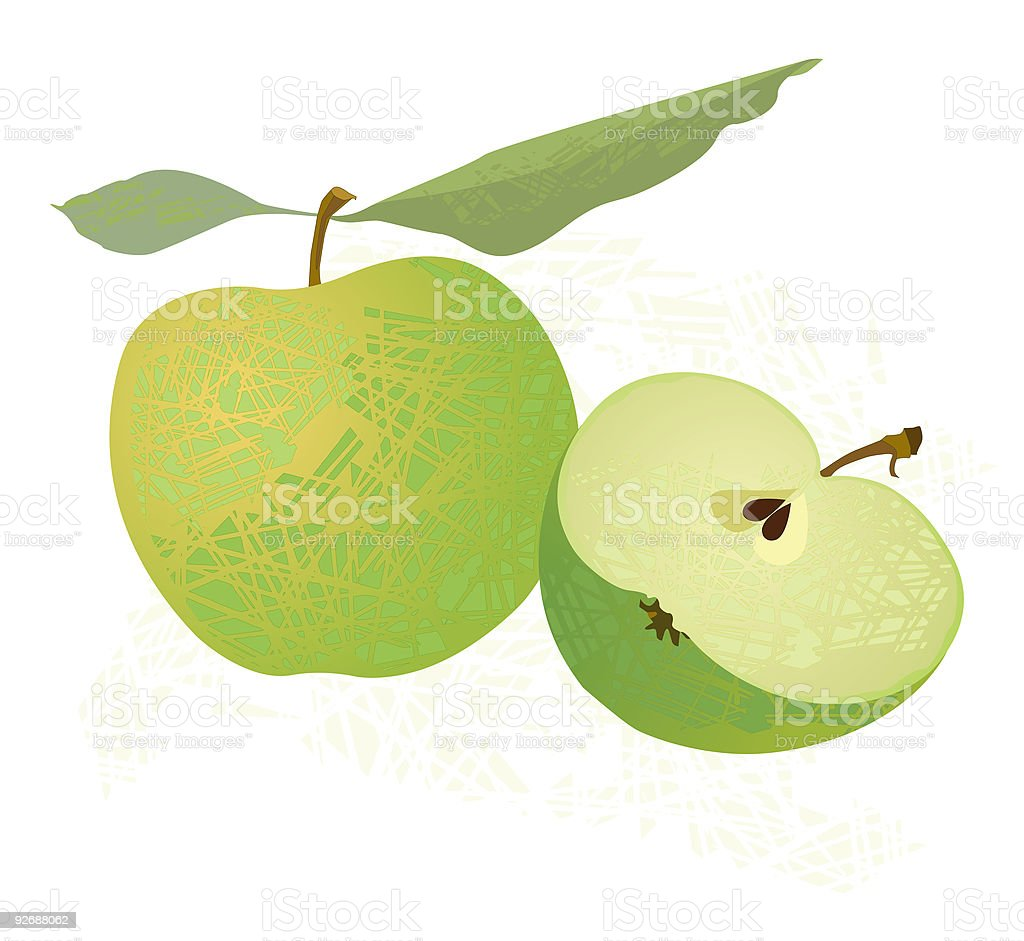 Green Apples vector art illustration