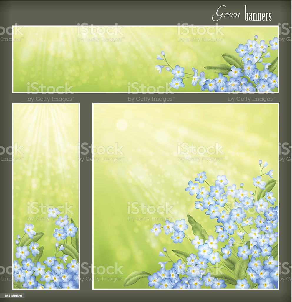 Green banners set with flowers and blurred sunrays royalty-free stock vector art