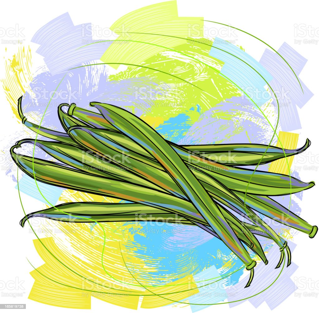Green Beans vector art illustration