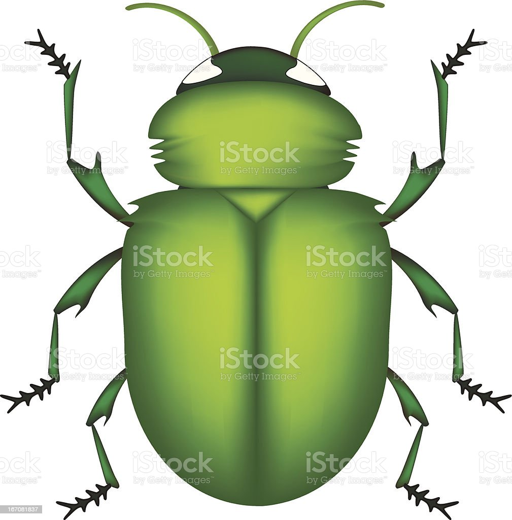 green beetle royalty-free stock vector art