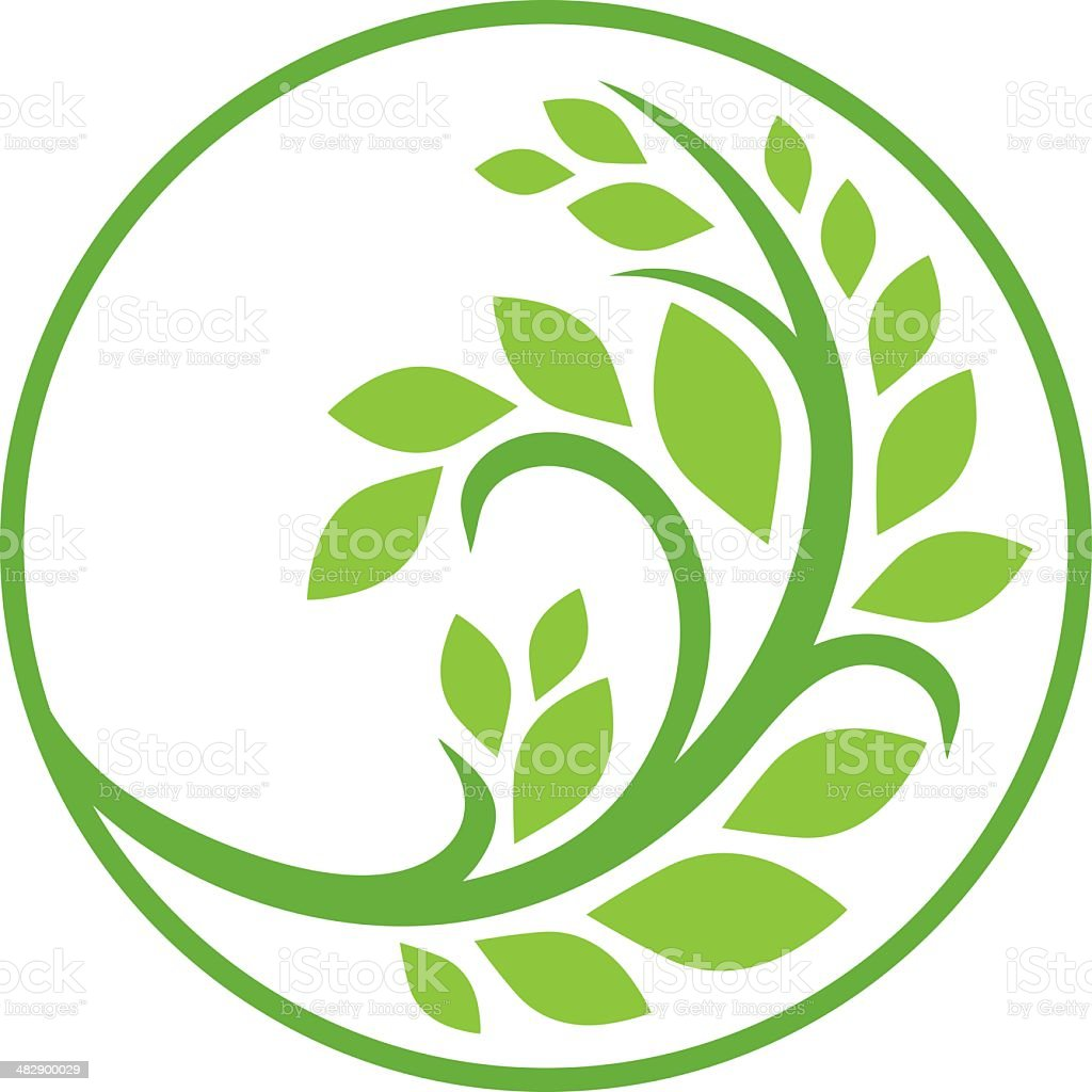 Green branch vector art illustration