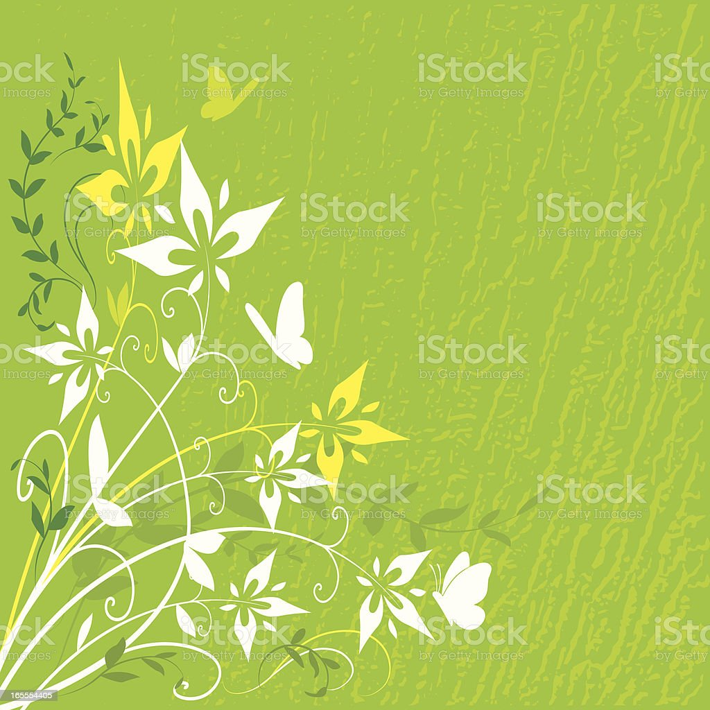 Green Butterfly Floral vector art illustration