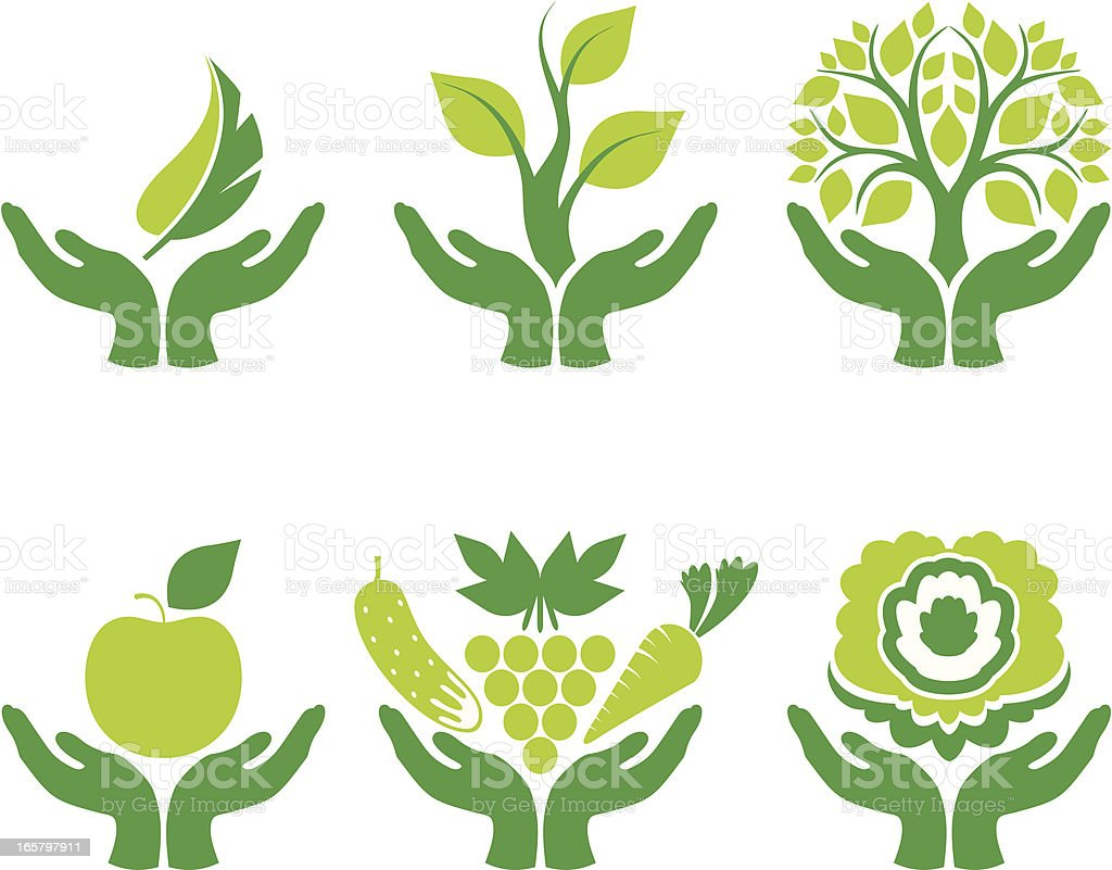 Green concept with hands holding nature elements vector art illustration