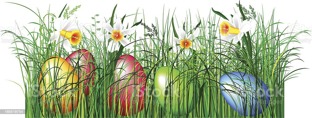 Green easter grass royalty-free stock vector art