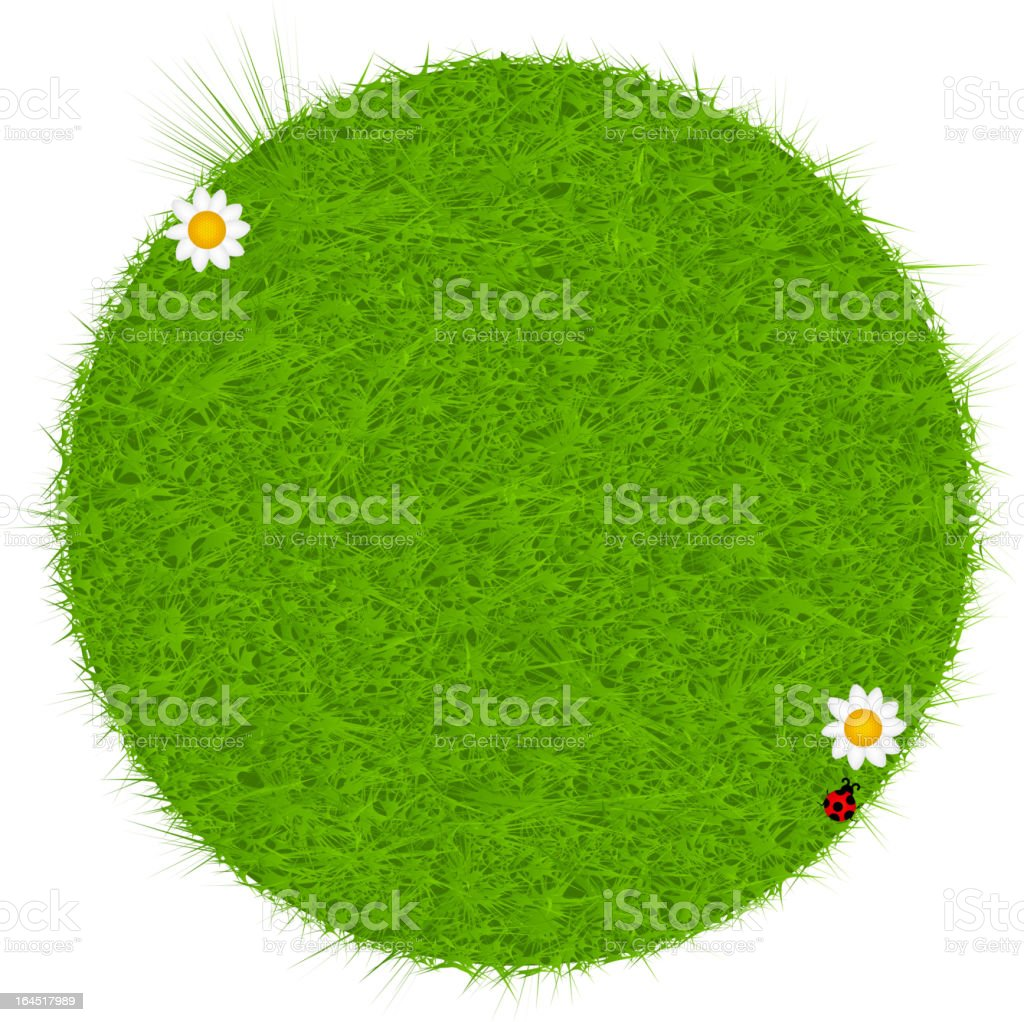 Green eco friendly label from grass. Vector illustration. royalty-free stock vector art