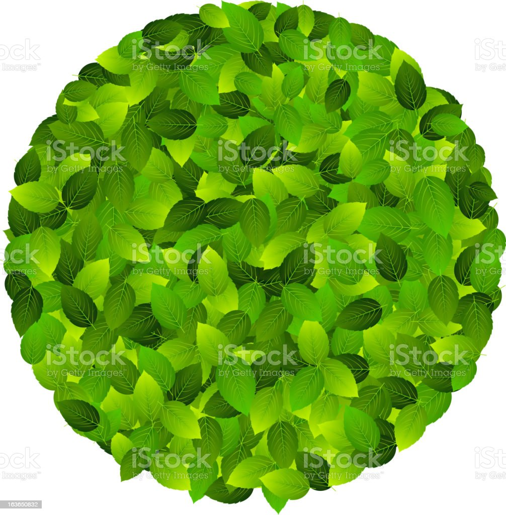 Green eco friendly label from  leaves. Vector illustration. royalty-free stock vector art