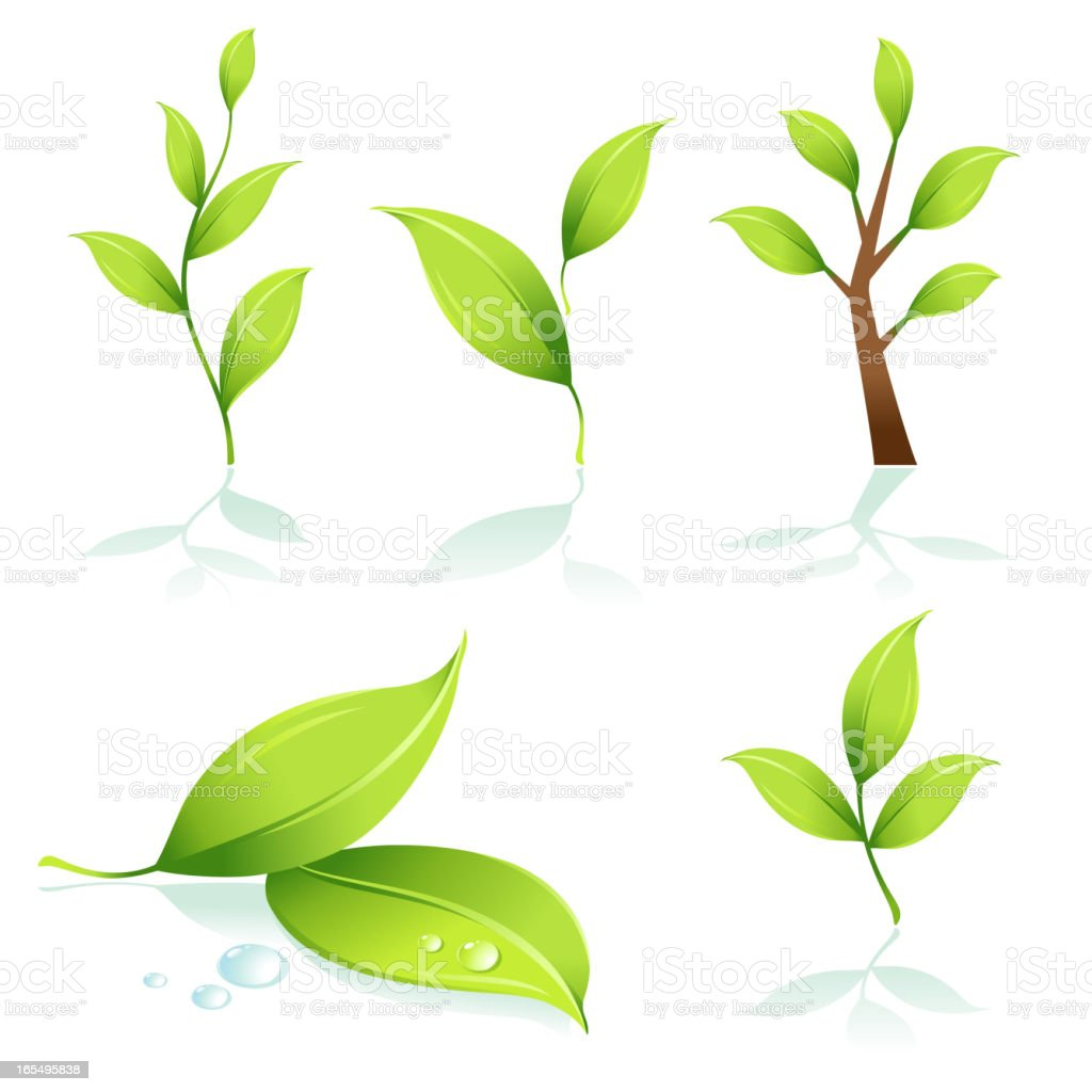 Green elements with green leaves royalty-free stock vector art