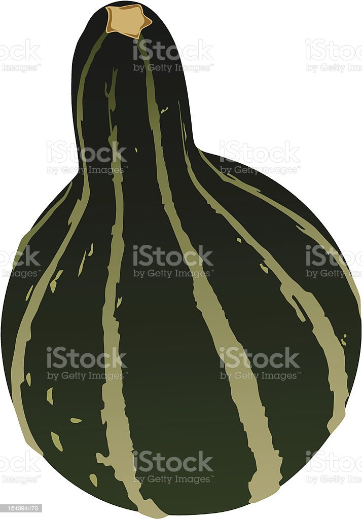 Green Fall Gourd/Squash royalty-free stock vector art