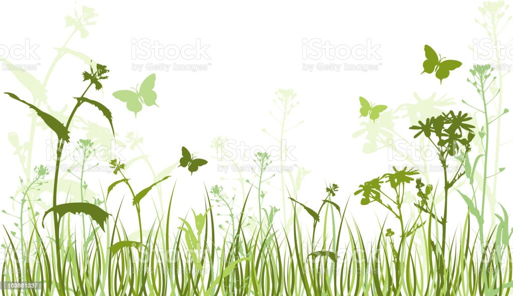Green floral background with butterflies royalty-free stock vector art