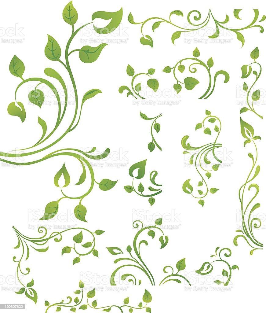 Green floral element vector art illustration