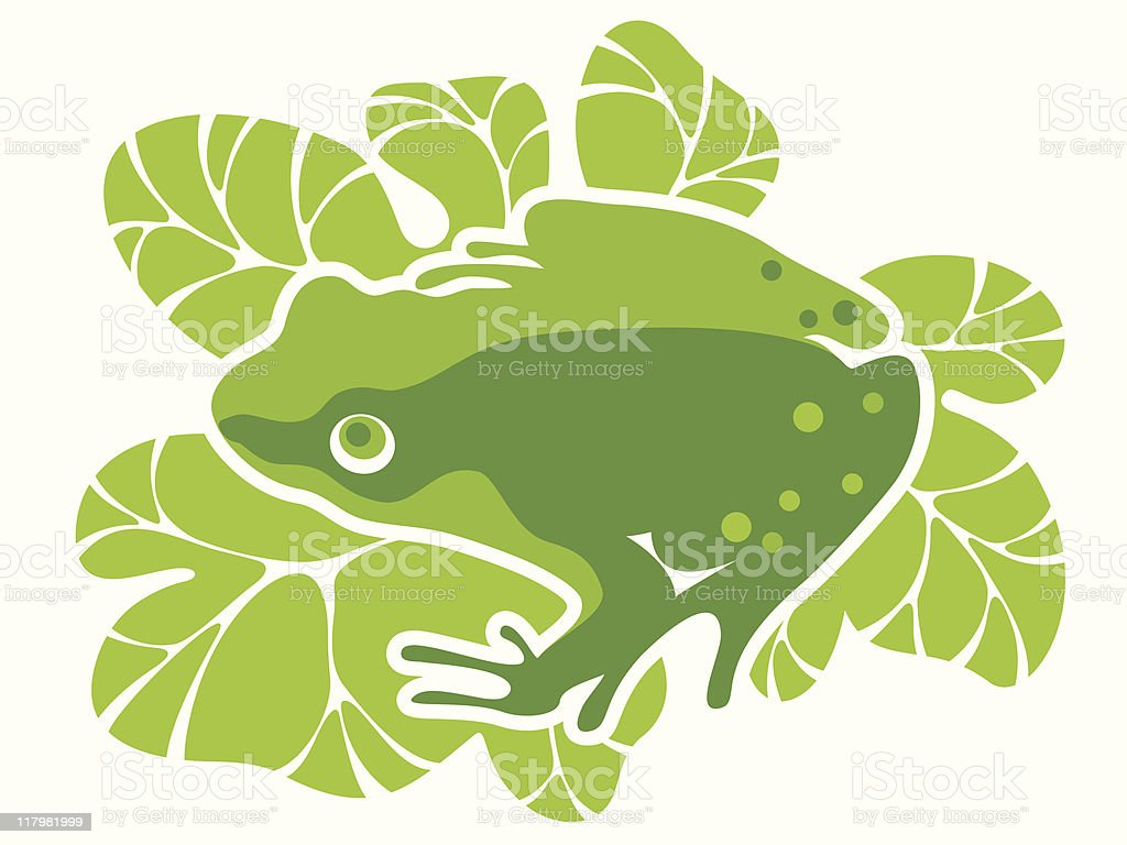 green frog royalty-free stock vector art