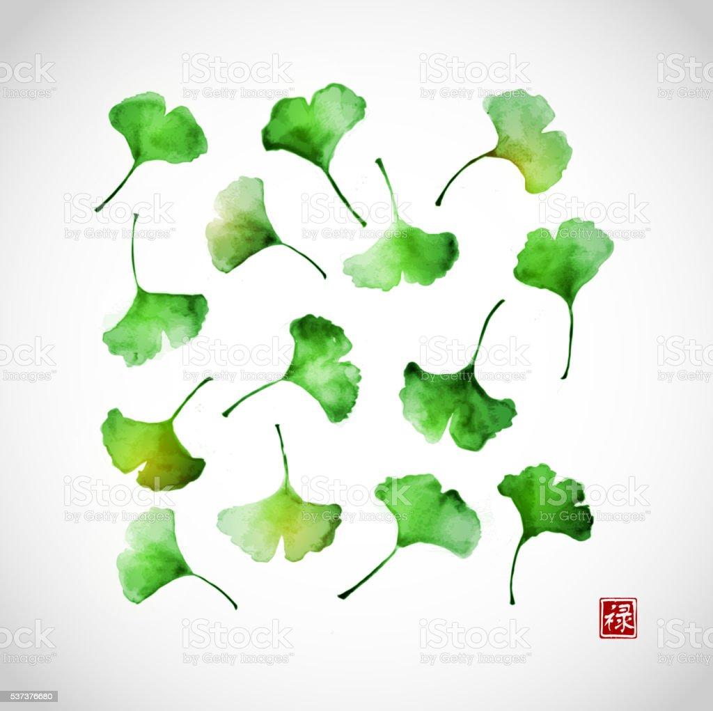 Green ginkgo biloba leaves vector art illustration