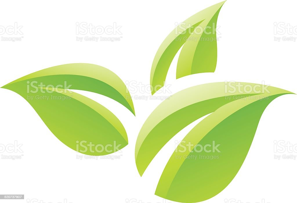 Green Glossy Leaves Icon vector art illustration