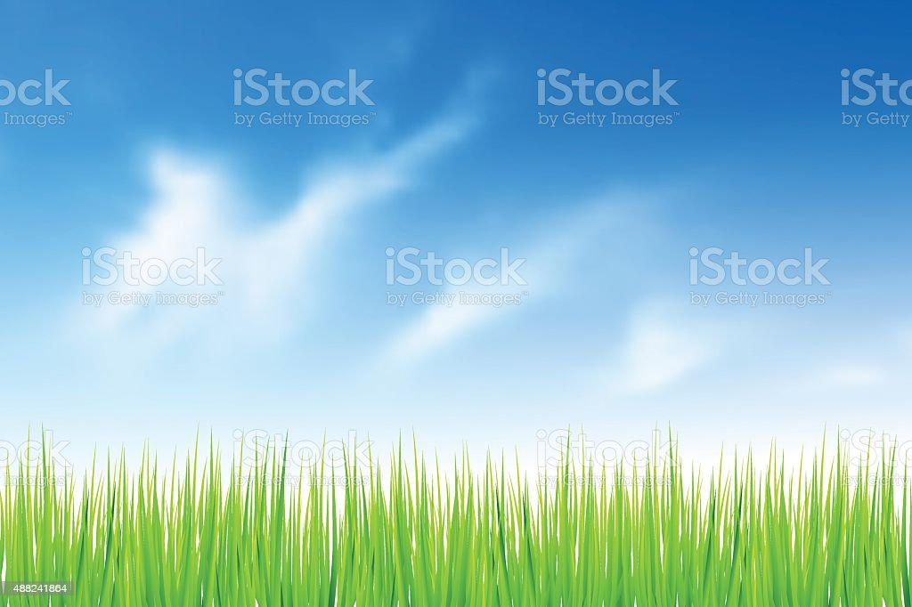 Green grass and blue sky vector art illustration