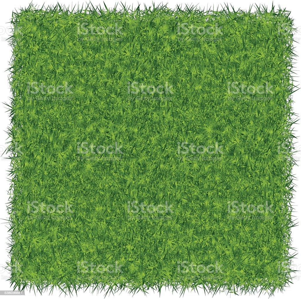 Green Grass Background vector art illustration