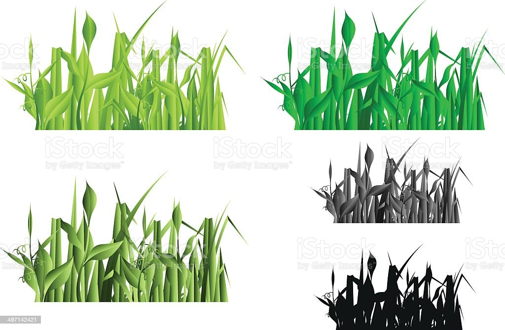 Green grass collection royalty-free stock vector art