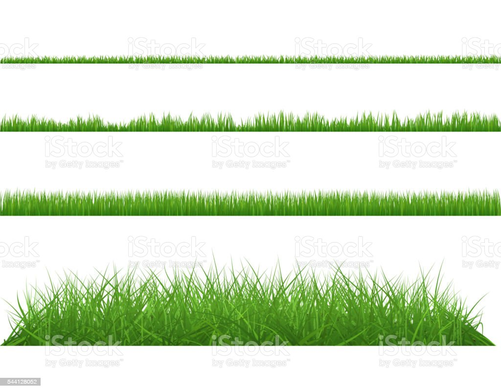 Green grass dense big and small. vector art illustration