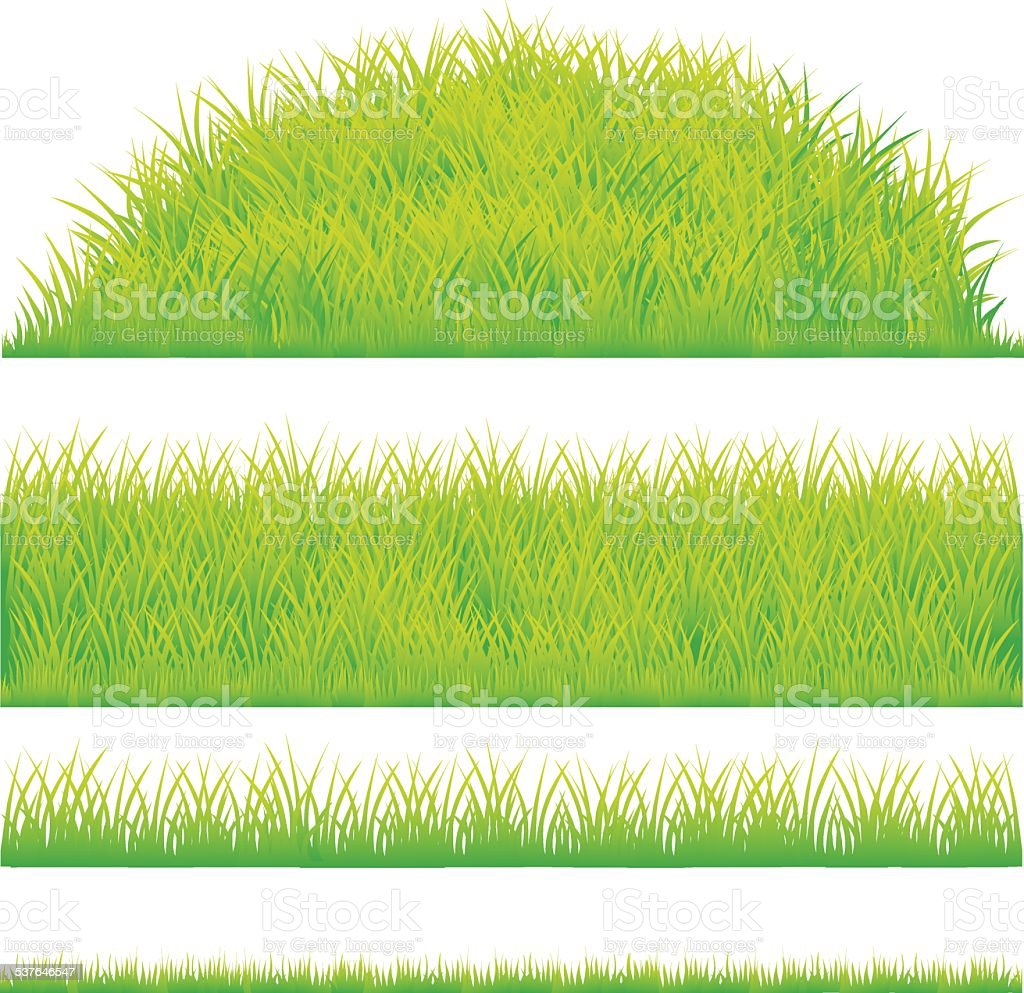 green grass design element vector art illustration