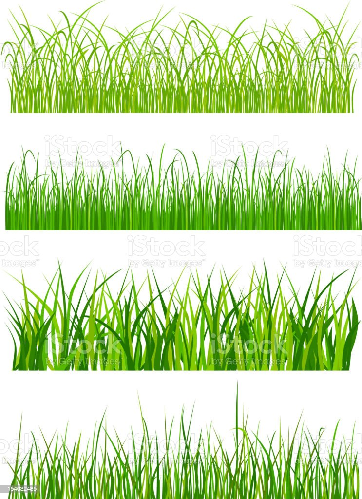Green grass elements royalty-free stock vector art