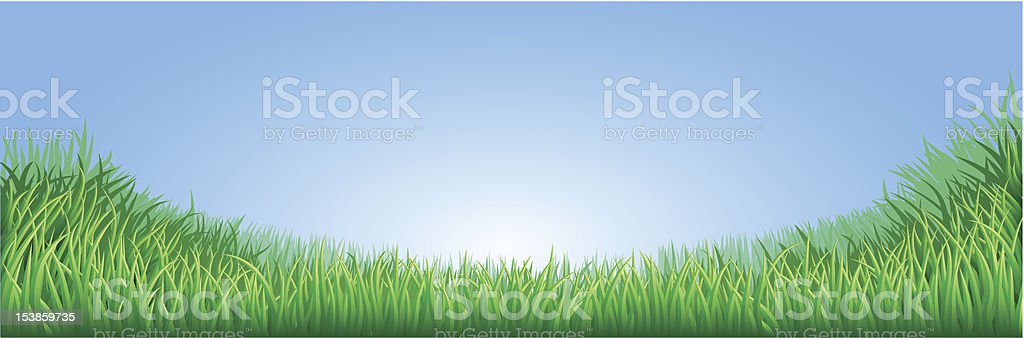Green grass field illustration royalty-free stock vector art