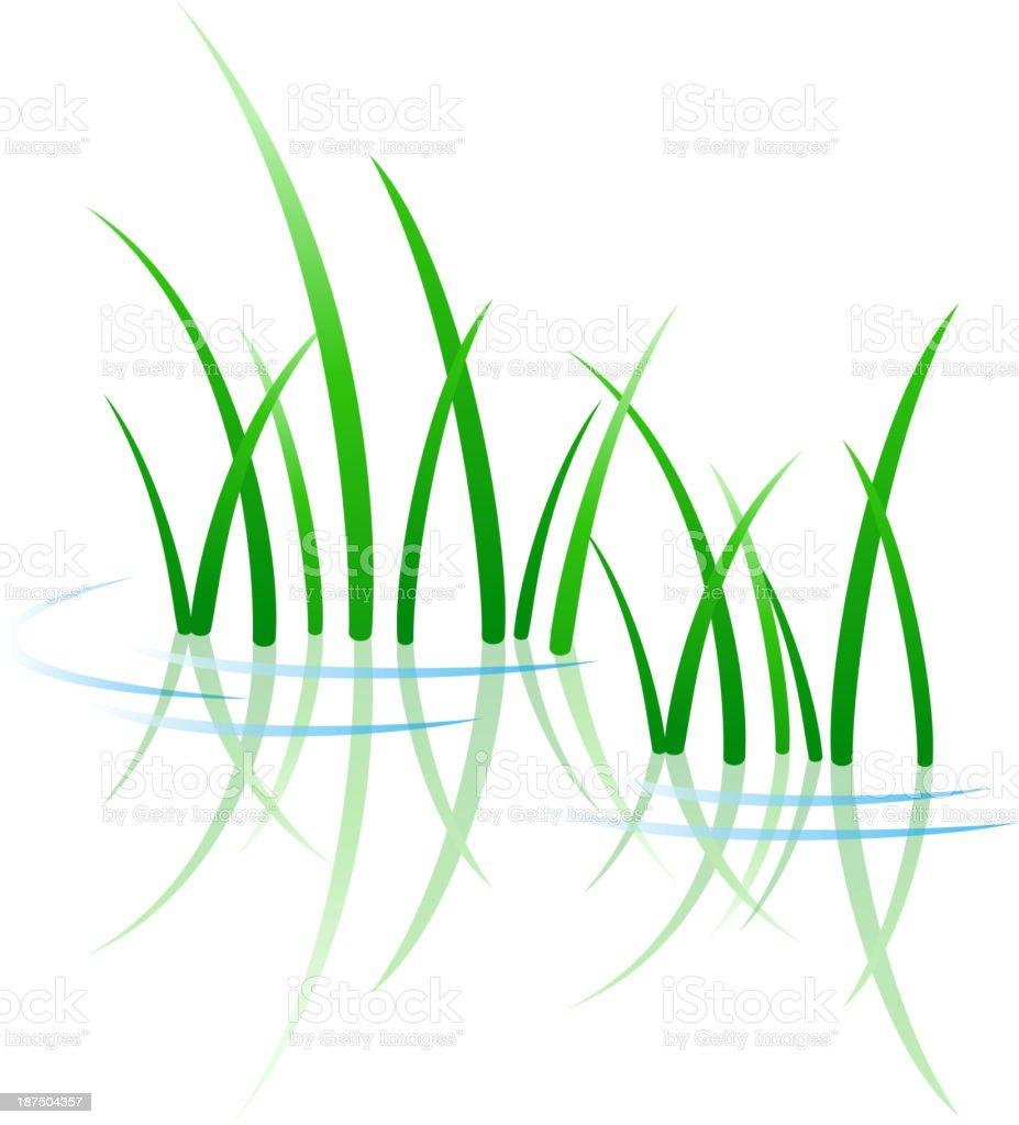 Green grass growing through water vector art illustration