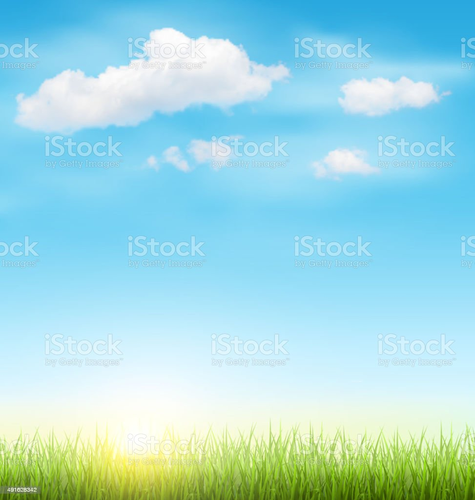 Green Grass Lawn with Clouds and Sun on Blue Sky vector art illustration