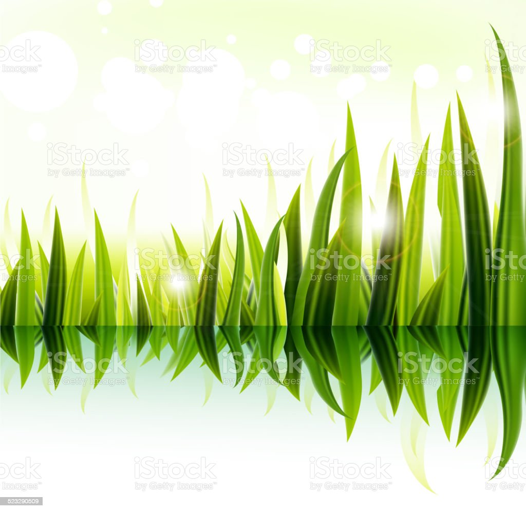 Green grass on the river vector art illustration