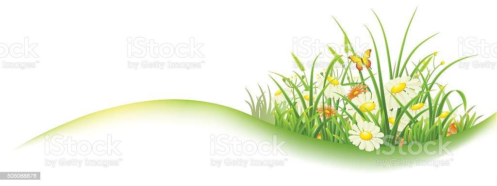 Green grass spring banner vector art illustration