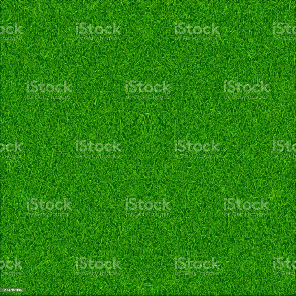 Green grass texture background vector art illustration