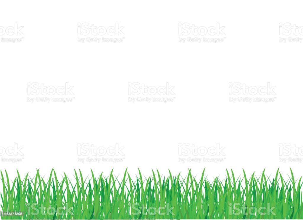 Green grass. Vector. Empty space for text or advertising. vector art illustration