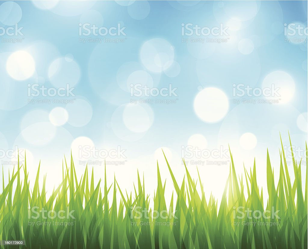 Green grass royalty-free stock vector art