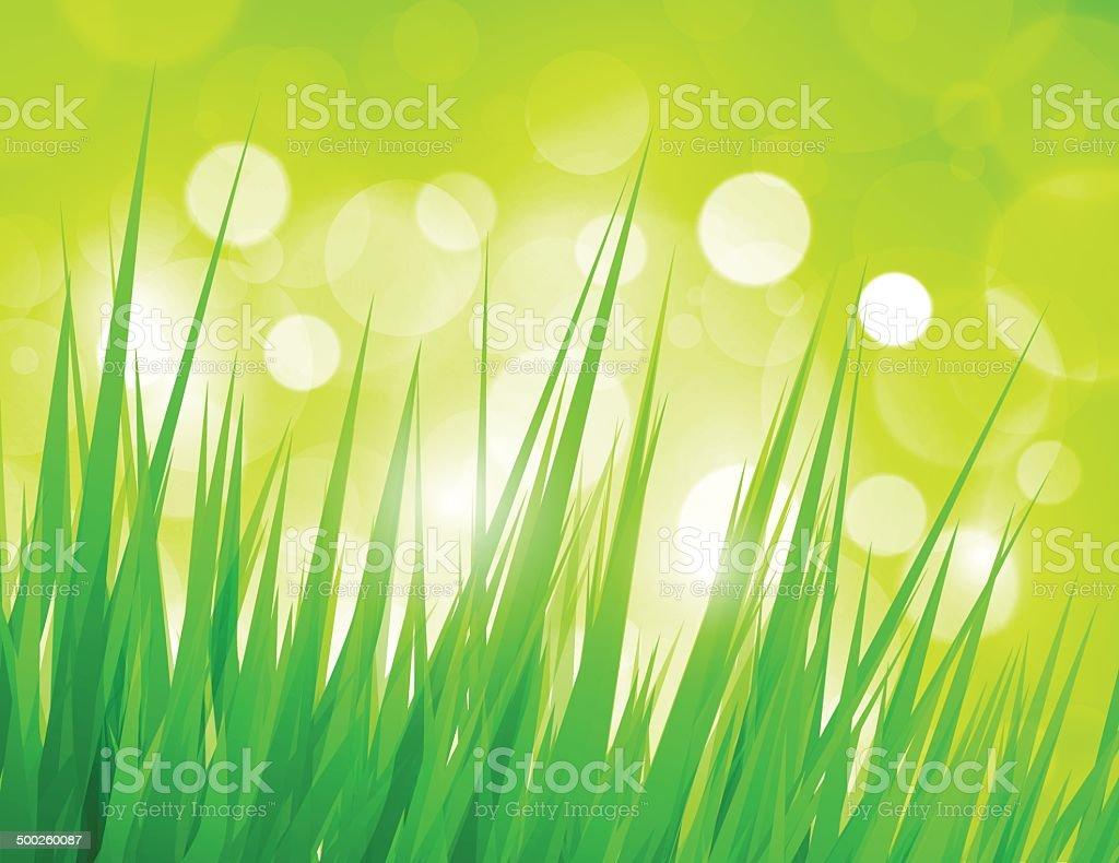 Green grass royalty-free stock vector art