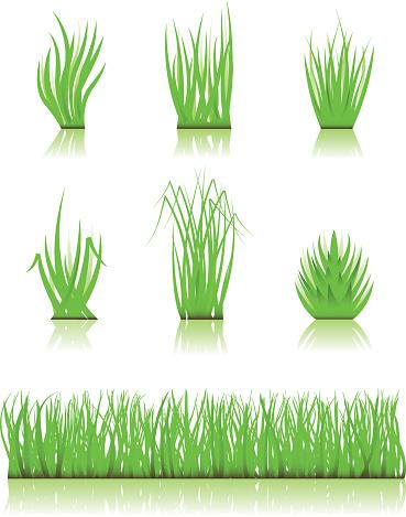 blade of grass vector - photo #12