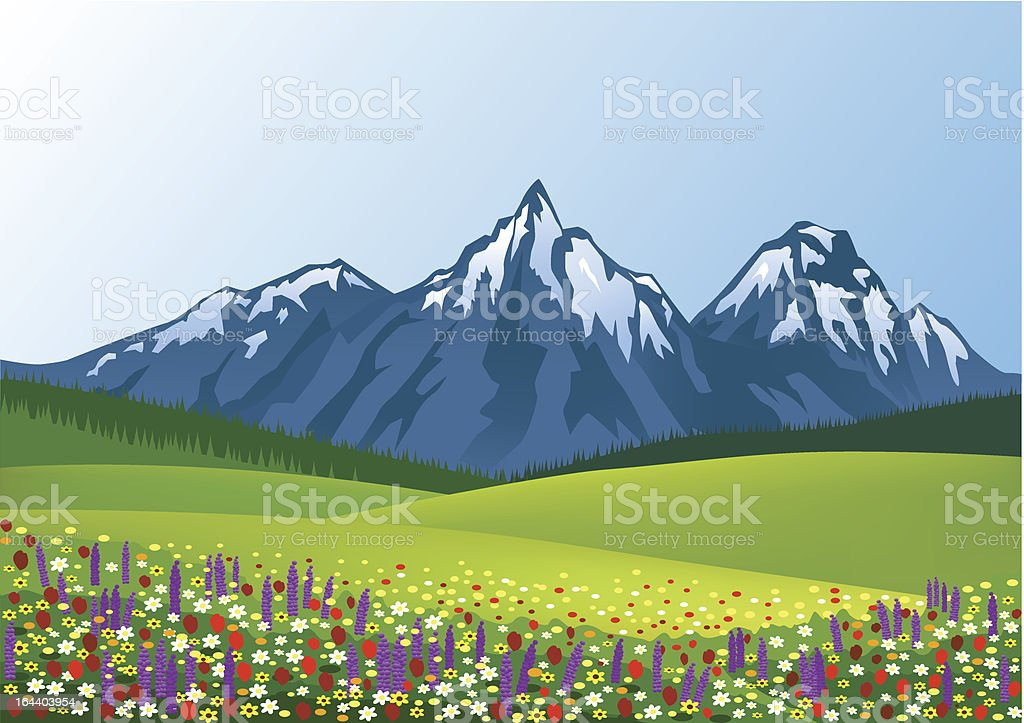 Green grass with colorful flowers and snow-capped mountains royalty-free stock vector art