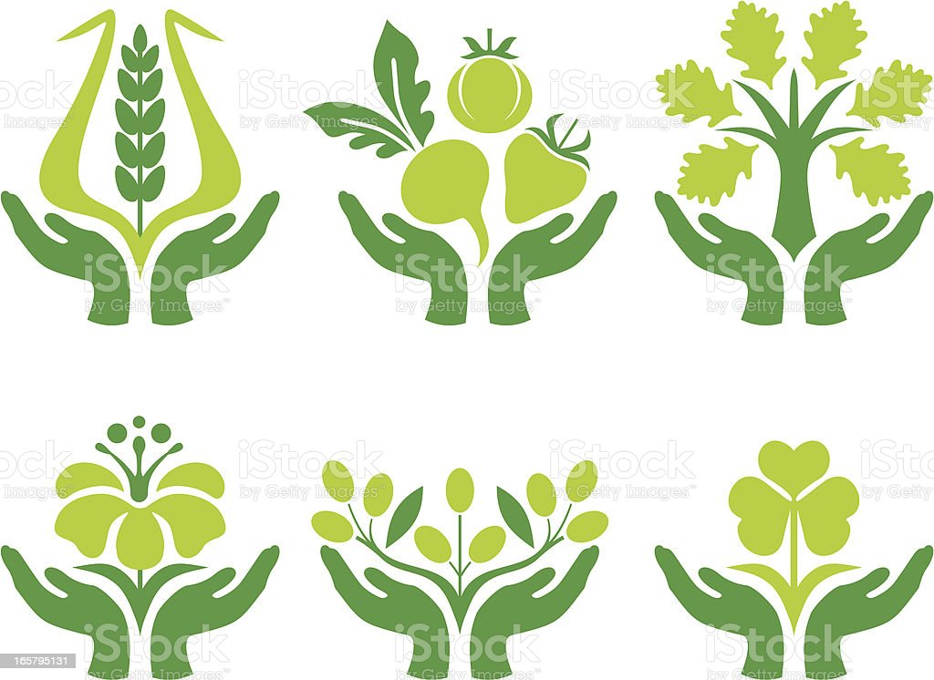 Green hands, icons vector art illustration