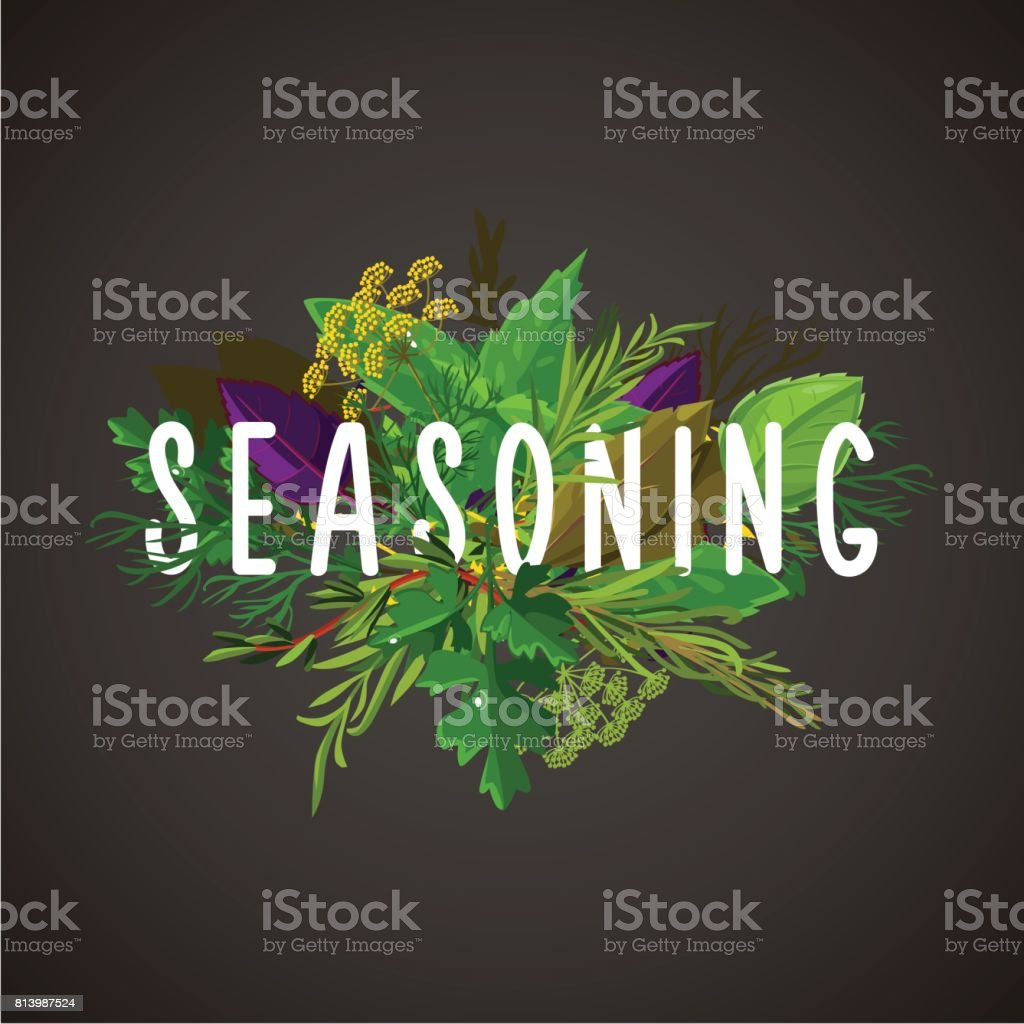 Green herbs and seasoning. Cooking ingredients. Isolated banner. vector art illustration