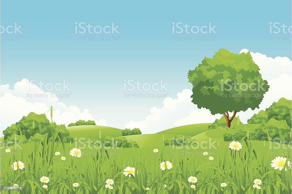 Green landscape royalty-free stock vector art