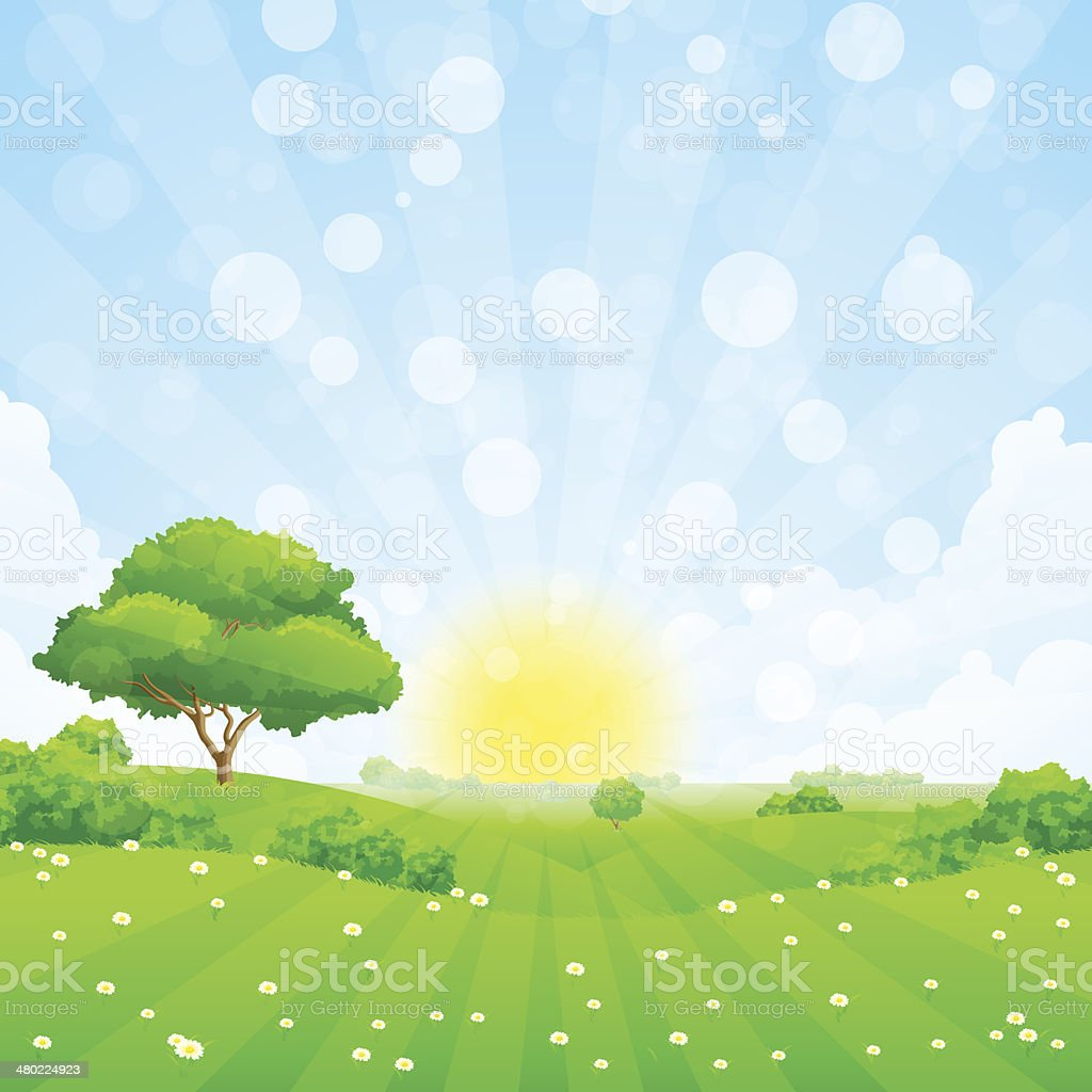 Green Landscape with  Tree royalty-free stock vector art