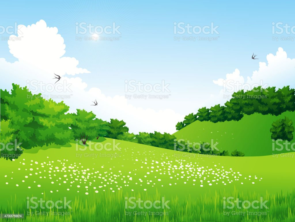 Green Landscape with trees, clouds, flowers vector art illustration