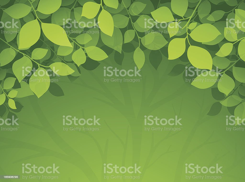 Green Leaf Background royalty-free stock vector art