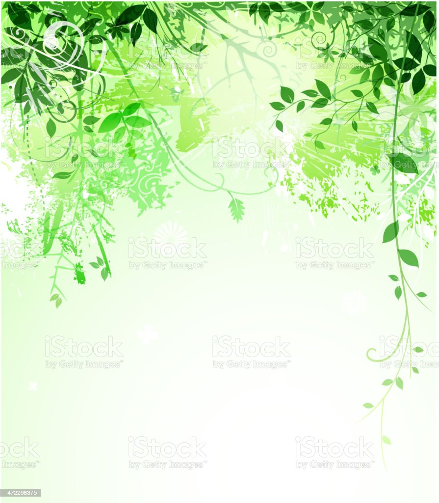 green leaf backround royalty-free stock vector art