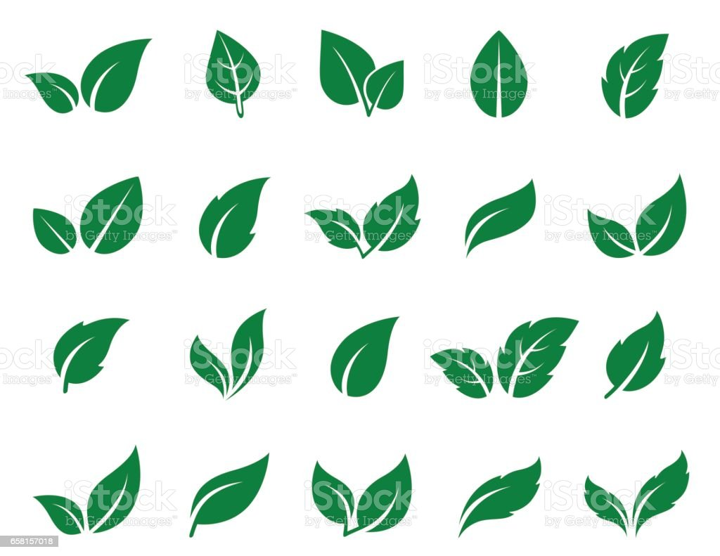 green leaf icons set vector art illustration