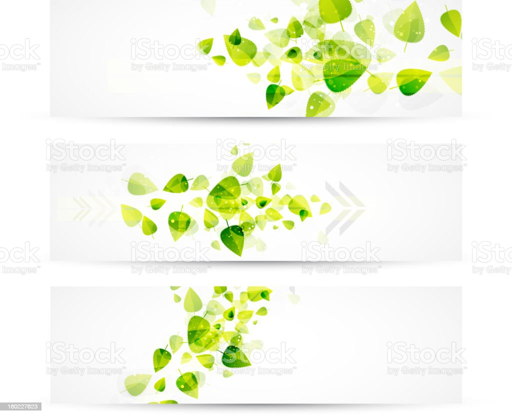 Green leaf nature banners royalty-free stock vector art
