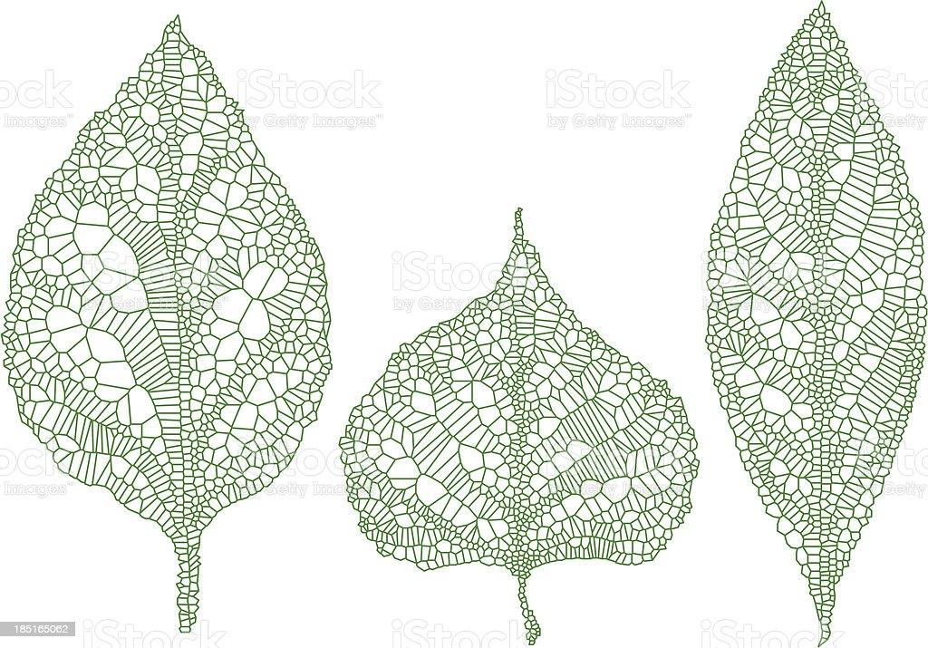green leaf silhouettes, vector set vector art illustration