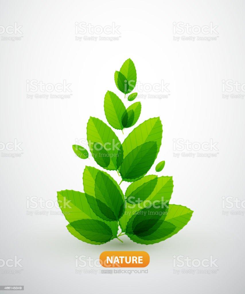 Green leaf summer tree royalty-free stock vector art